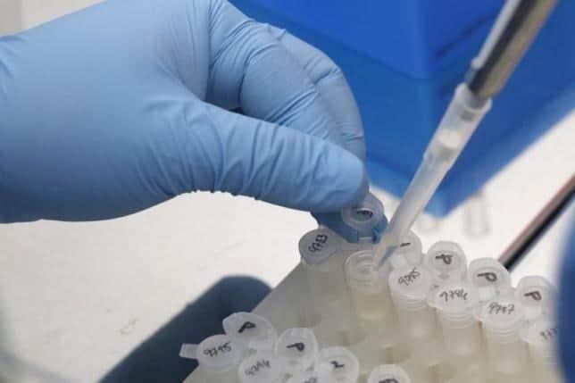 virus, Zika, Tạp chí, sinh học, công nghệ sinh học, công nghệ vi sinh