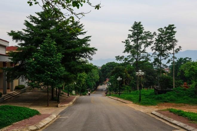 đồi lâm nghiệp, đại học Lâm nghiệp