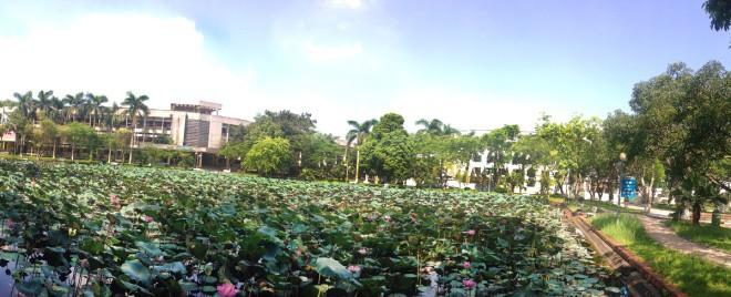 hồ sen, khuôn viên, học viện Nông nghiệp