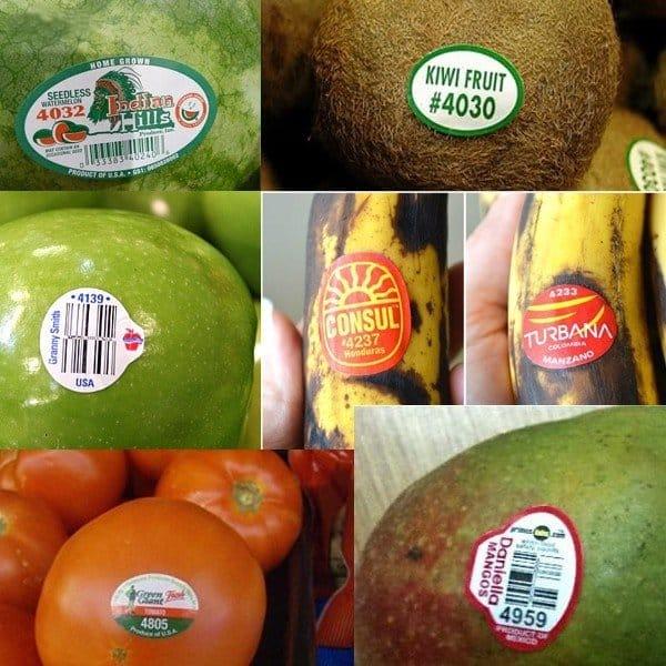 thực phẩm, biến đổi gen, GMO