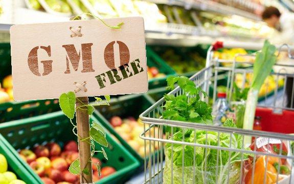 thực phẩm biến đổi gen, GMO