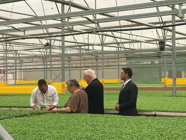 công nghệ nhà kính, Teshuva Agricultural Projects (TAP), Israel
