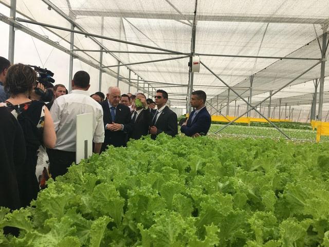 quan chức tháp tùng Tổng thống Israel cũng nếm thử rau sạch ngay tại vườn