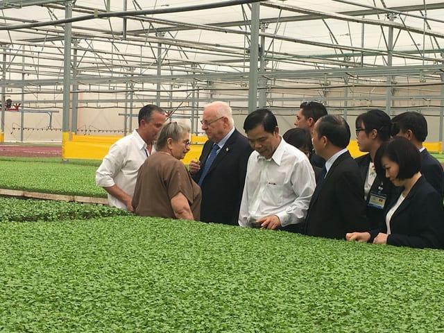 rau mầm, ứng dụng, tiến bộ kỹ thuật, nông nghiệp hữu cơ