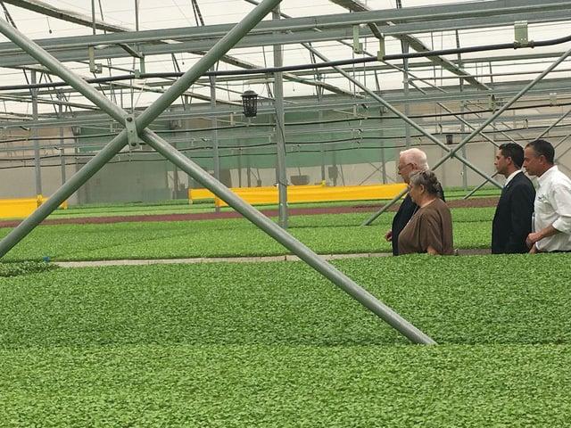 Tổng thống Israel, Reuven Ruvi Rivlin, nông nghiệp sạch, rau sạch, VinEco