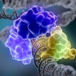Phát hiện mới về nguyên nhân gây ung thư, các lỗi ADN ngẫu nhiên