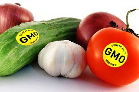 thực phẩm biến đổi gen, cây trồng biến đổi gen, hoa quả, thực phẩm hữu cơ, nông nghiệp sạch