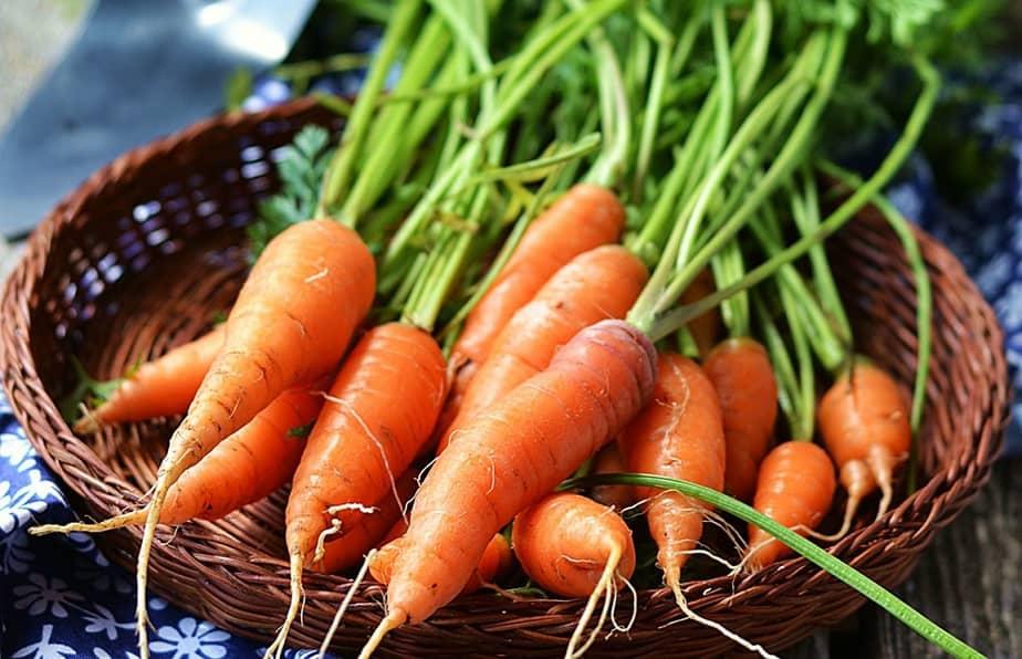cà rốt, carrot, trái cây giàu dinh dưỡng
