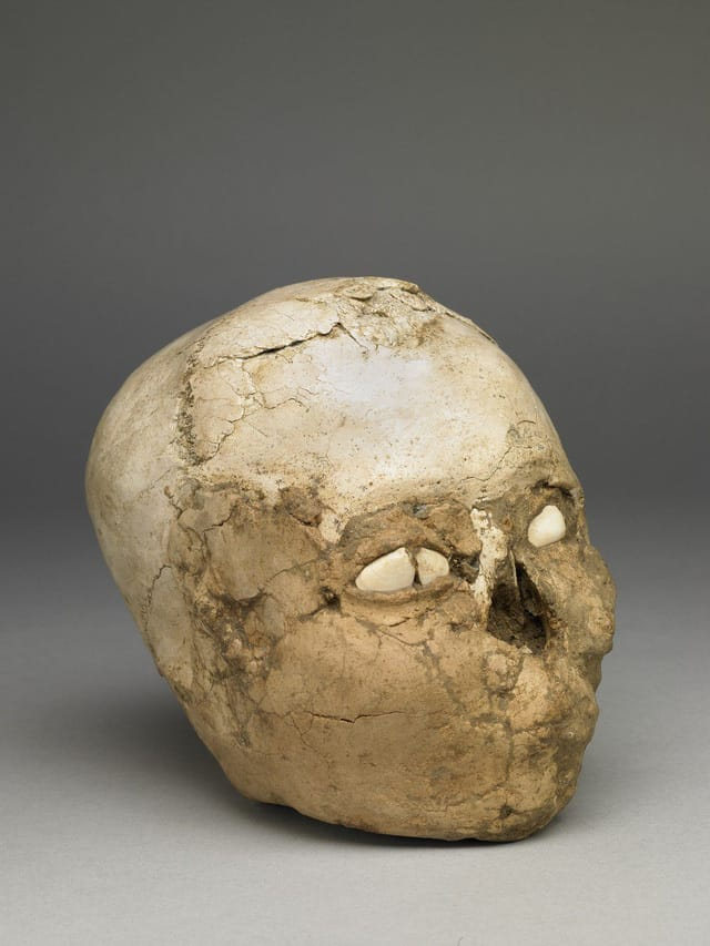 Jericho Skull 9.500 năm tuổi có một hộp sọ con người với đất ở bên trong và được phủ thạch cao ở bên ngoài