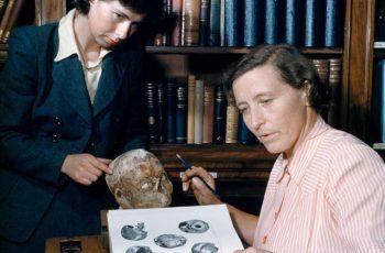tái tạo khuôn mặt của người đàn ông 9.500 tuổi, Jericho Skull, bảo tàng Anh