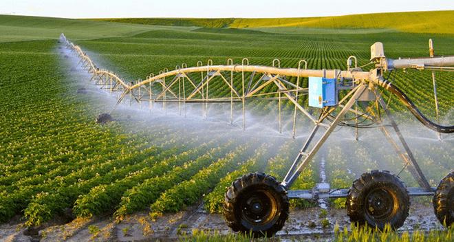 ứng dụng khoa học công nghệ vào nông nghiệp công nghệ cao, nông nghiệp công nghệ cao là gì, chế phẩm sinh học diệt cỏ từ thảo mộc, thuốc trừ sâu sinh học