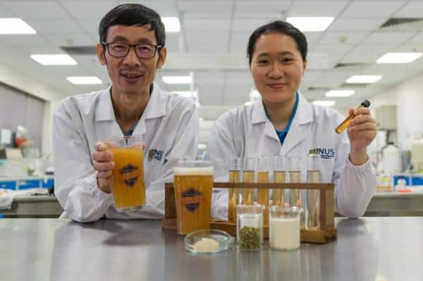 bia probiotic, vi khuẩn axit lactic, vi sinh vật probiotic