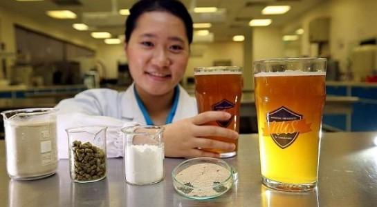 bia probiotic, tăng khả năng miễn dịch
