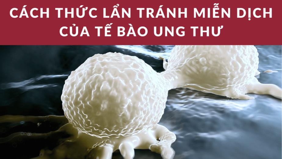 cách lẩn tránh miễn dịch của tế bào ung thư, hệ miễn dịch là gì, kháng thể, kiểu huyết thanh là gì