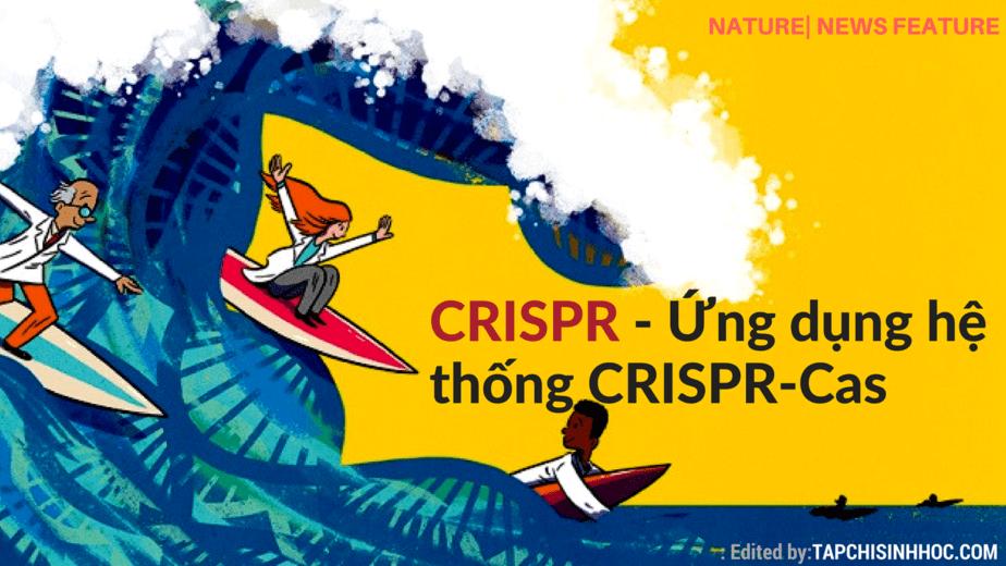 CRISPR, CRISPR-Cas, làn sóng CRISPR, tiềm năng của CRISPR-Cas9, chạy đua khoa học,