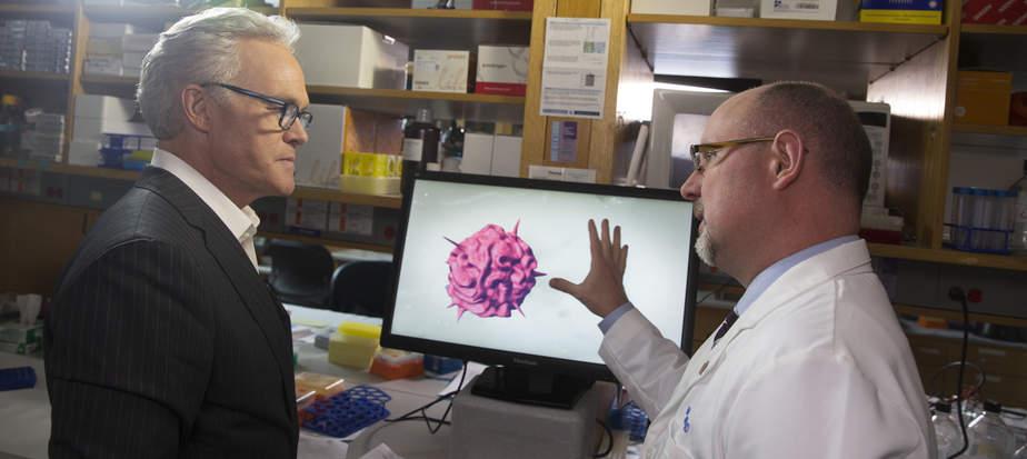 Dùng poliovirus để hỗ trợ điều trị ung thư, tiêu diệt khối u, hỗ trợ điều trị ung thư, cách chữa ung thư, dùng virus tiêu diệt ung thư, điều trị ung thư bằng virus, cách điều trị ung thư, Poliovirus, Virus cải biến, cải biến di truyền, ứng dụng kỹ thuật di truyền trong điều trị bệnh