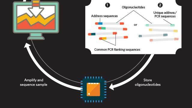 Lưu trữ dữ liệu bằng DNA, DNA có thể lưu trữ dữ liệu của toàn thế giới, Giải trình tự, dịch mã, Thông điệp từ ngoài hành tinh, lưu trữ dài hạn, Flash memory, silicon memory chip, nanochip, ổ cứng, bộ nhớ, Bits, trits, EBI, Microsoft, Ewan Birney, George Church, Nick Goldman, PCR, CRISPR-Cas9,