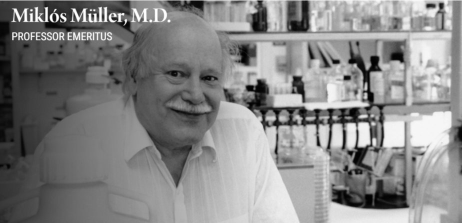 Sự xuất hiện oxy và tiến hóa của ty thể, Miklo Muller