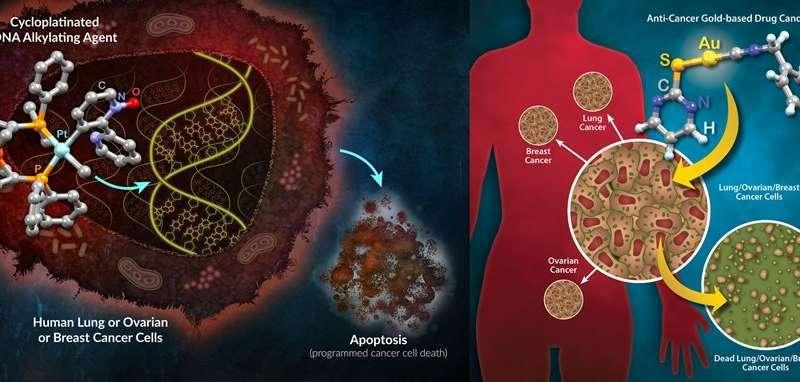 Thiết kế phức hợp vàng và platin tăng hiệu quả hóa trị