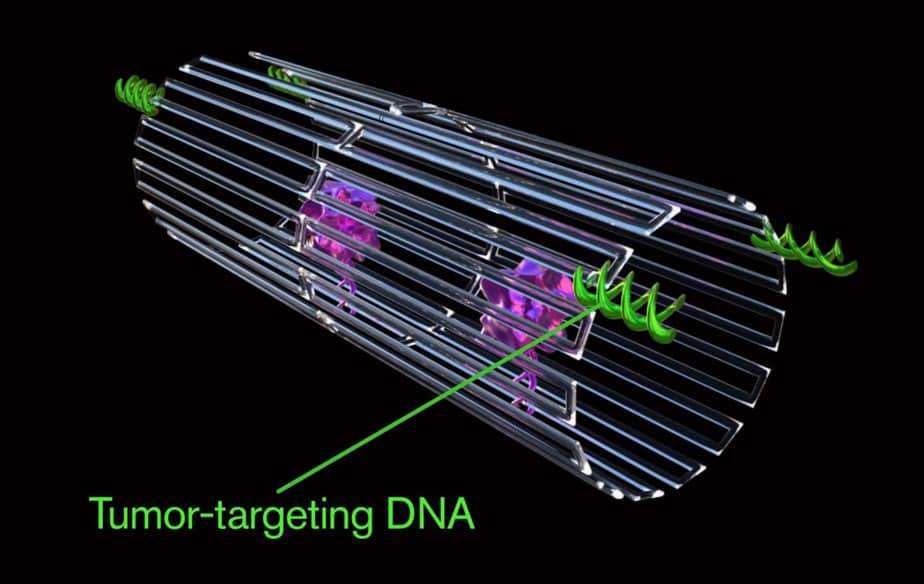 Ứng dụng robot DNA tiêu diệt ung thư, nanotechnology, nanorobots, nanomedicine, DNA origami, DNA nanotechnology, DNA nanomachine, cancer therapeutics, cancer, công nghệ nano, robot ADN, liệu pháp ung thư, DNA origami là gì, Origami là gì, Công nghệ nano DNA, Nano y học,
