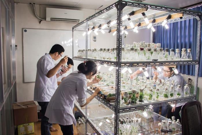 Đào tạo ngành công nghệ sinh học bậc đại học, công nghệ sinh học, đại học khoa học tự nhiên, khoa sinh học, học công nghệ sinh học ra làm gì,