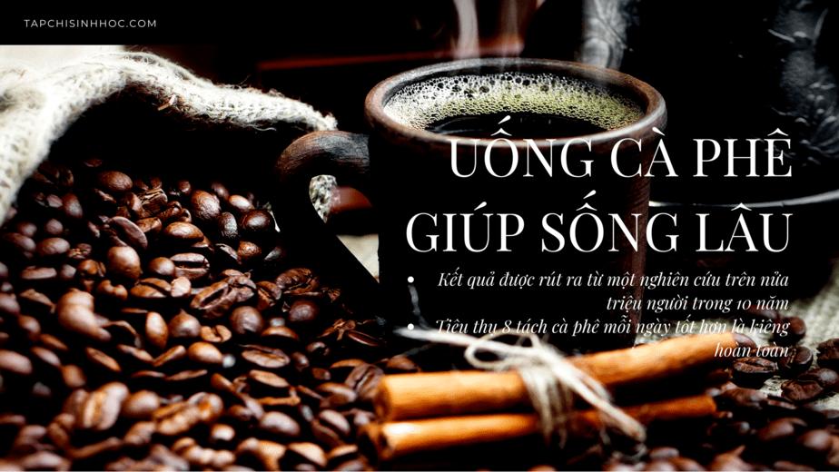 Uống cà phê có thể giúp bạn sống lâu hơn, tác dụng của cà phê, cà phê tốt cho sức khỏe, cà phê có hại cho sức khỏe, cà phê gây mất ngủ, cà phê hại thần kinh, caffein, cà phê giúp tập trung, cà phê và não bộ, lợi ích của cà phê, cà phê không caffein, uống bao nhiêu cà phê là vừa,