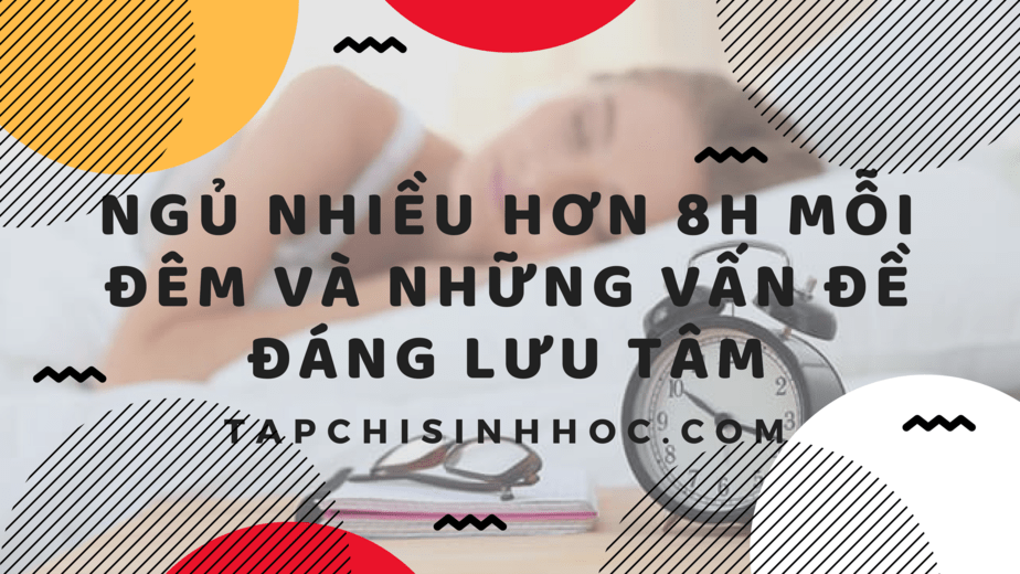Ngủ nhiều có thể là dấu hiệu của các vấn đề sức khỏe, ngủ nhiều đau đầu, ngủ nhiều mệt mỏi, nguyên nhân ngủ nhiều, ngủ nhiều hơn 8 tiếng mỗi đêm, ngủ đủ giấc, tác hại của ngủ nhiều, tác hại của thiếu ngủ, ngủ nhiều có tốt không, ngủ bao nhiêu một ngày
