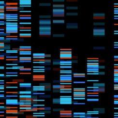 giải mã 100000 hệ gen người tại Anh